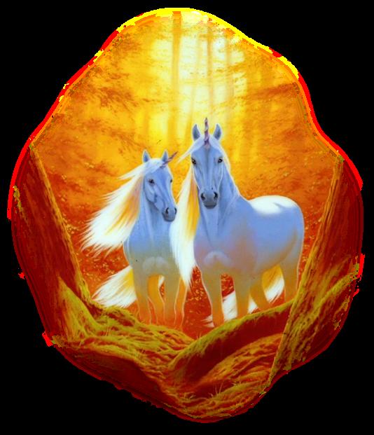 صور خيول رائعه 4xm992he